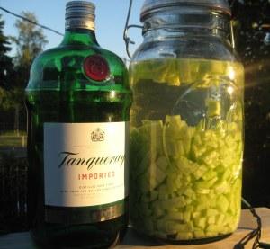 cucumber mint gimlet gin