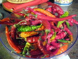 october can jam chili peppers at grow and resist