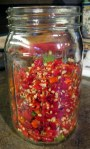 fermenting hot peppers at grow and resist