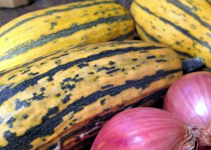 delicata squash and shallot/grow and resist
