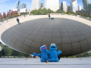 grow and resist. cookie and grover chicago