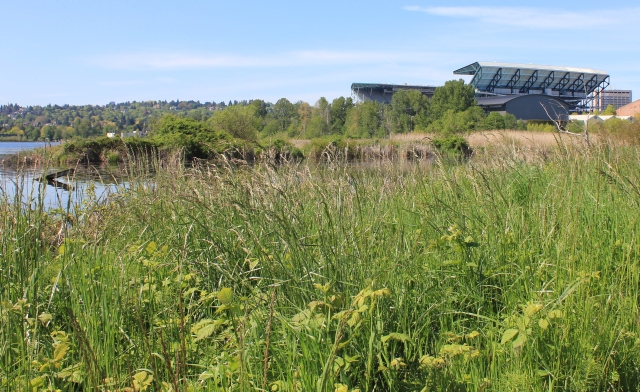 grow and resist park spotlight union bay natural area