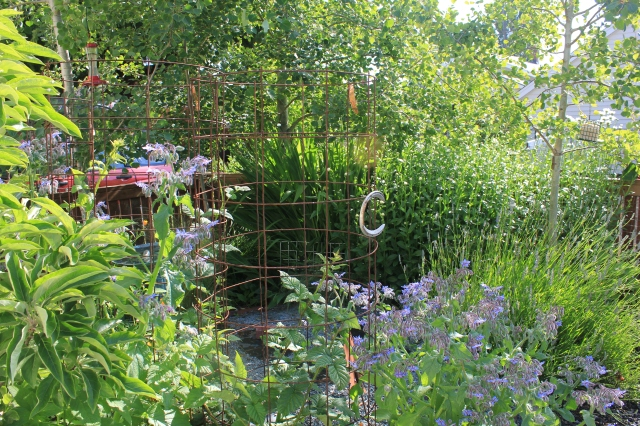 grow and resist july mid month meanderings garden overview