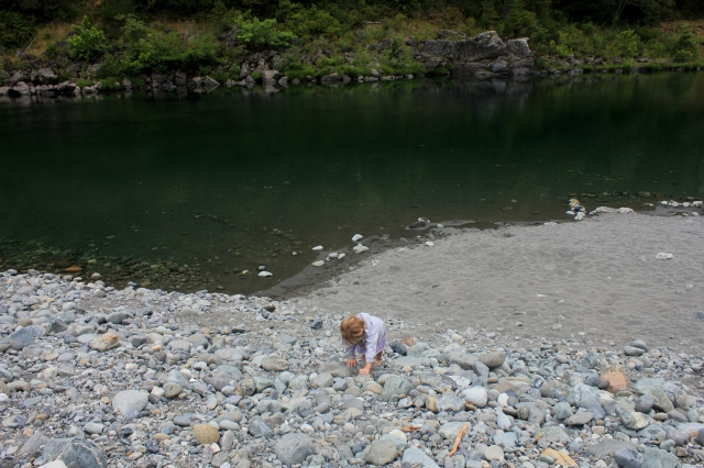 Jedediah Smith Redwoods State Park grow and resist parenting roadtrip post