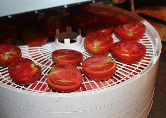 grow and resist tomatoes dehydrate