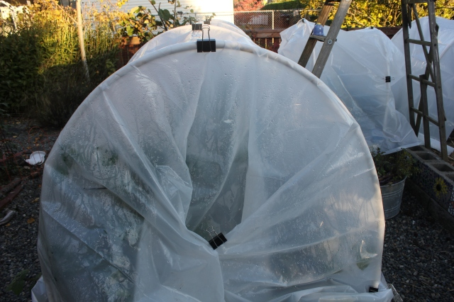 grow and resist hoop house season extension
