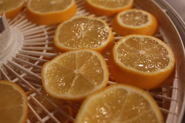 grow and resist meyer lemons dehydrate