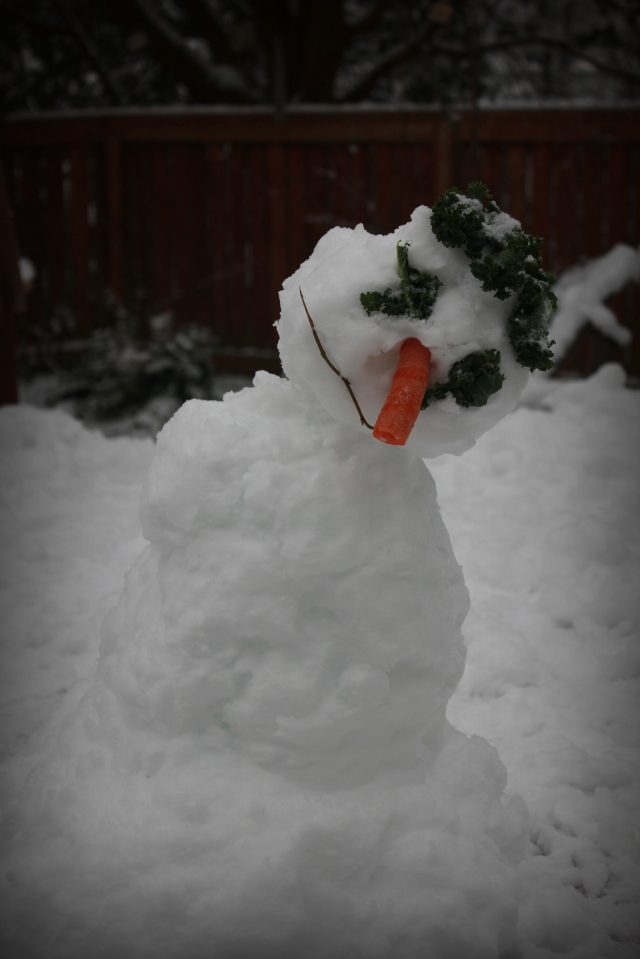 January mid month meanderings grow and resist chard snowman