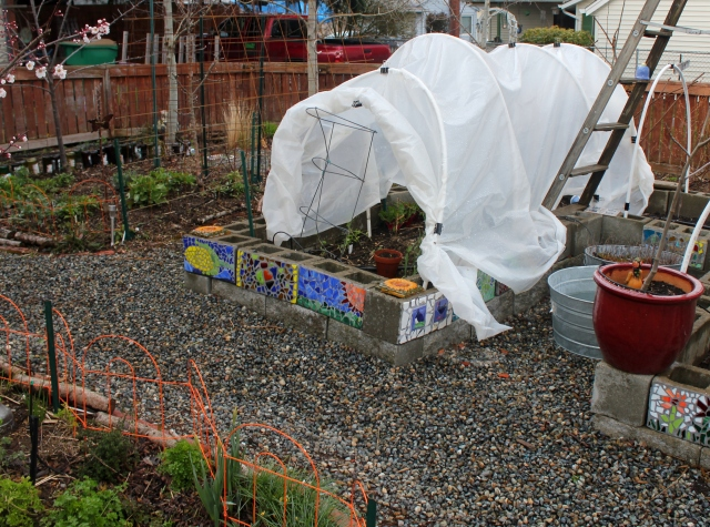 grow and resist mid month meanderings march overview with hoop house