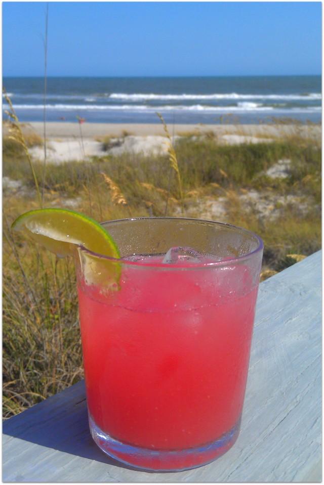 grow and resist Carolina Paradigm Shift Watermelon gin cocktail